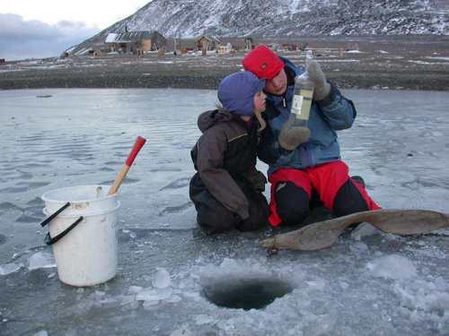 Innhenting av forskningsmateriale til studier av livet i bunnfrosne laguner på Svalbard.