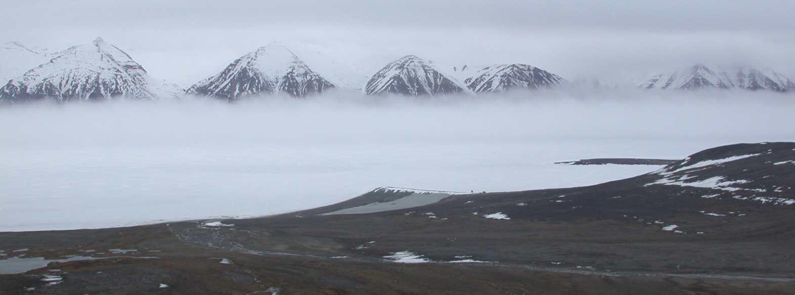 Slik er det hos oss om dagen.  Bart på bakken, is på fjorden, grått i lufta.  Kjøttstativet og hytta skimtes midt på bildet.