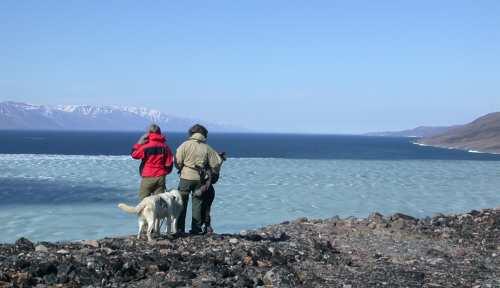 Utsikten mot nord søndag 29. juni.   I løpet av lørdagen ble Wijdefjorden renset for is.  Nesten.  Iskanten går et par kilometer nord for oss.  Derfra og sørover til bunnen av fjorden ligger isen ennå.  Så fortsatt går vi i spenning og venter på når dønningene skal slå mot stranda på Austfjordneset.